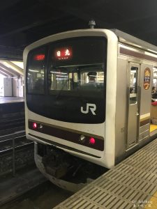 [Move] To Nikko transferring train at Utsunomiya Station