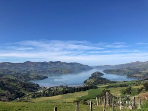 [Plan] New Zealand- A day trip out of Christchurch to Akaroa