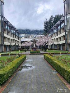 [住宿] 紐西蘭- 皇后镇諾富特湖畔飯店入住心得